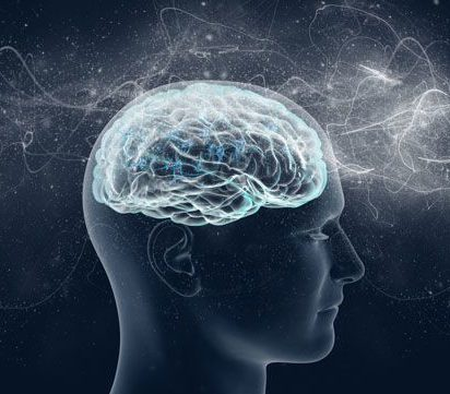Forming Experts in Neuroscience